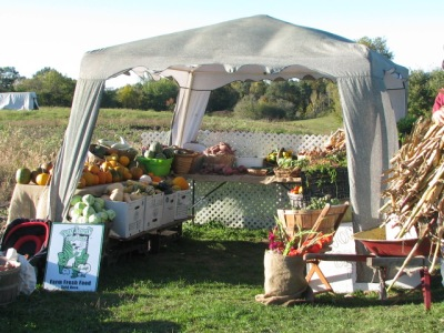 Overall view of the shelter with vegetables displayed for pickup