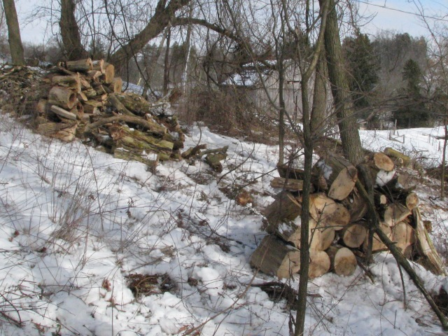 The piles of Manitoba cut to stove length and stacked, barn in the backgrund