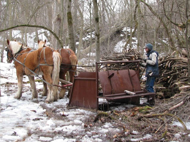 Down at the valley bottom, Aerron is just backing the horses to get the sled in a good spot to load it.