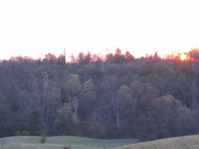 Sunrise, the week ending May 8