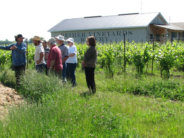 The tour group at Reimer Vineyards, Art is second from the left in the white shirt. We were discussing the subtleties of composting the pile of duck manure.