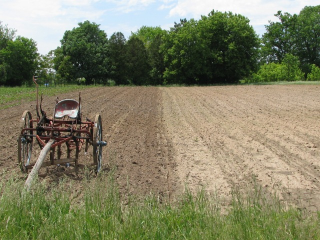 The cultivator resting on the area ready for squash and other vines