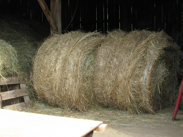 The large round hay bales just inside the doors.