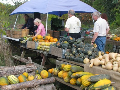 Another view of the pickup area last week, lots of squash.