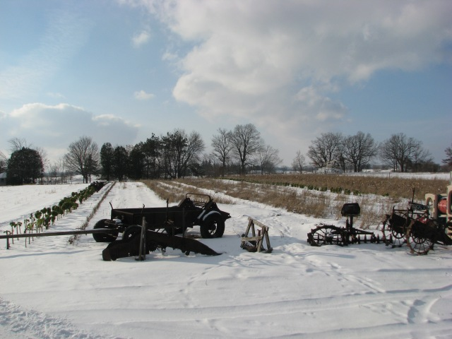 The week -to -week spot in nice winter sunshine and a bit of softening snow.  Machinery still awaiting repair.