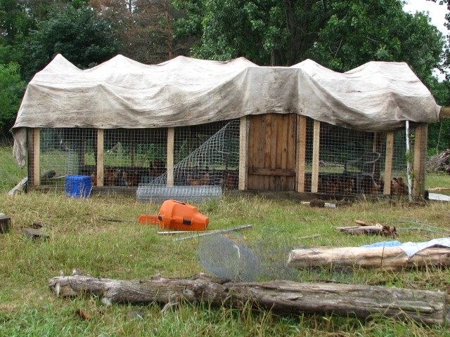 A work in progress, our new chicken house. it has it's charm don't you think?