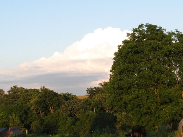 July 15, a large, impressive cloud, lots of growing greenery.