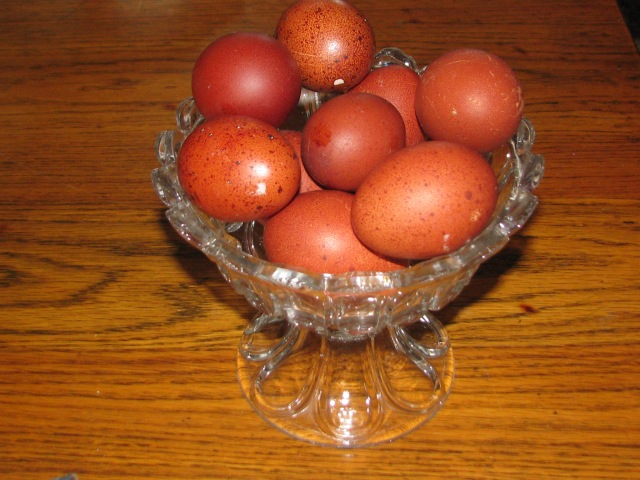 A bowl of Marans eggs, the very darkest ones