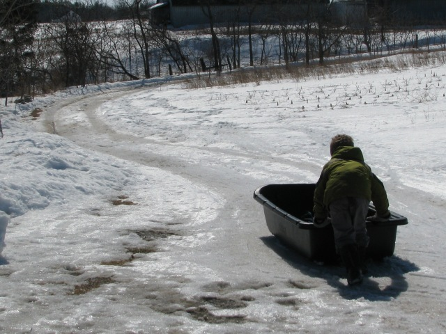 The hay sled is also great for sliding down hills and the lane is still snow covered enough o make it a good run.