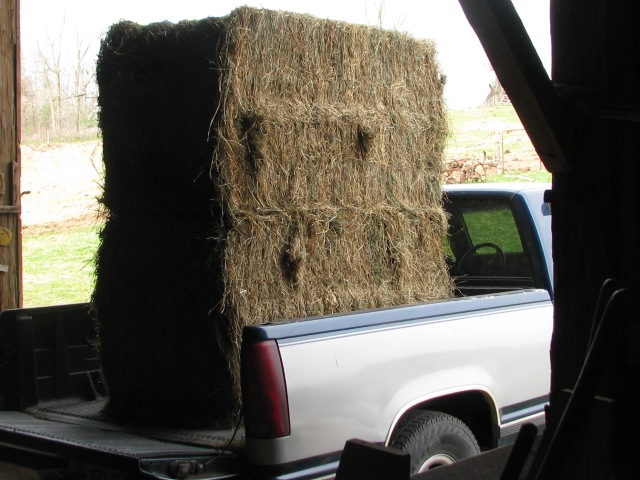 Two large square bales from our neighbours before being unloaded into the barn.
