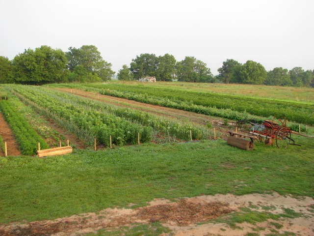 A view to the right, cultivator resting, the drum roller on behind.