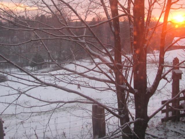 Sunny snowy morning a few days back.