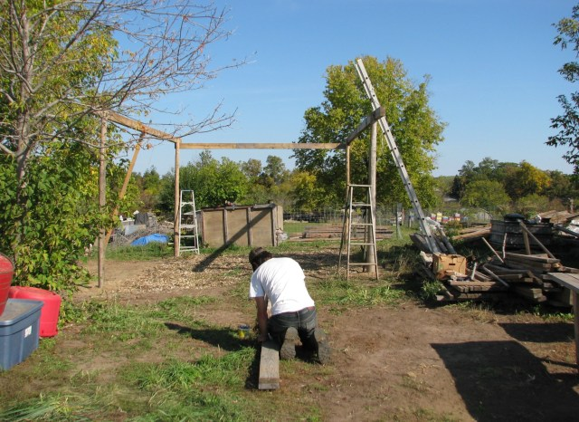 Aerron nailing up a beam for the shelter frame.