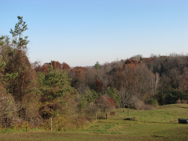 This view down the valley has been put on the blog several times. No fall colours now.