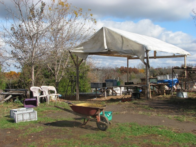 Thursday November 3 getting the sheltered pick up area ready for the CSA.